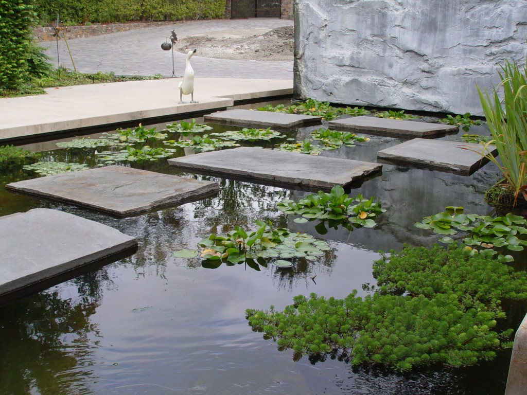 Stone, Plants, Art, Water  detailing of pool path  Lafayette Residence, Paul Cowley, ASLA